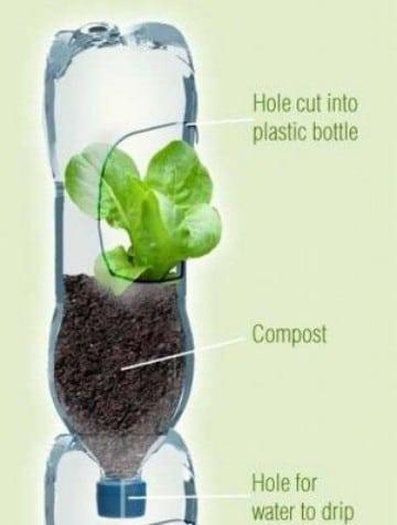 como hacer maceteros de botellas plasticas macetas