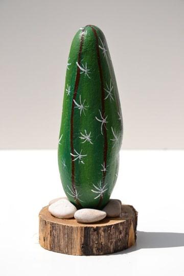 cactus pintados en piedras solitario