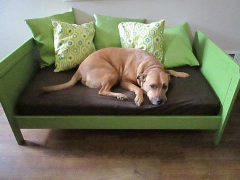 camas para perros caseras reciclaje