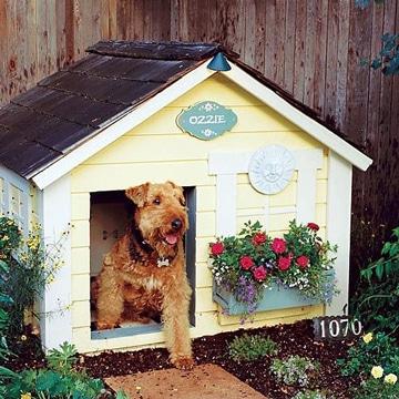 casitas para perros pequeños tradicional