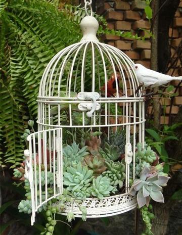 como hacer jaulas para canarios con plantas