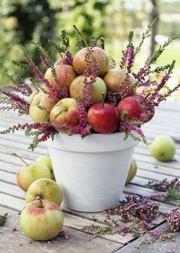 como decorar con frutas en maceta