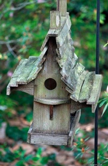 casas para aves silvestres pequeñas