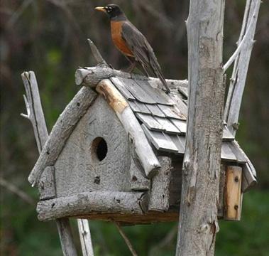 casitas de madera para pajaros acabado rustico