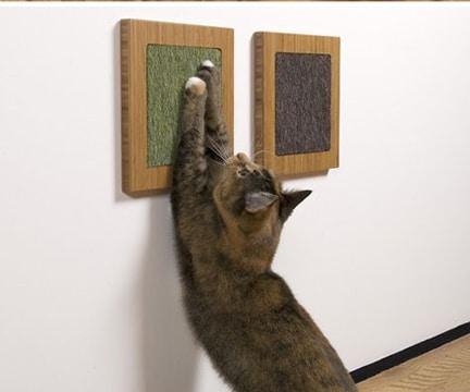 juegos caseros para gatos con tela