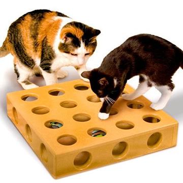 juegos caseros para gatos divertidos