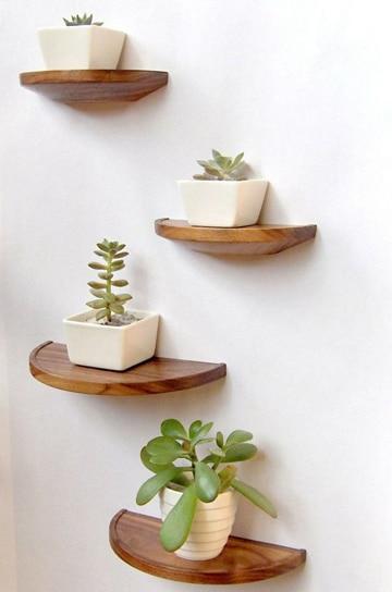 macetas para cactus pequeños sencillas