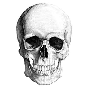 dibujos de calaveras de halloween originales