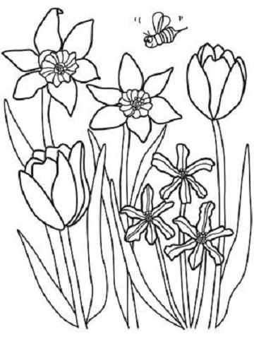 dibujos de la primavera para niños faciles
