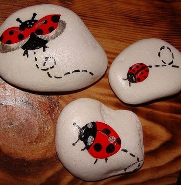 mariquitas pintadas en piedras variadas