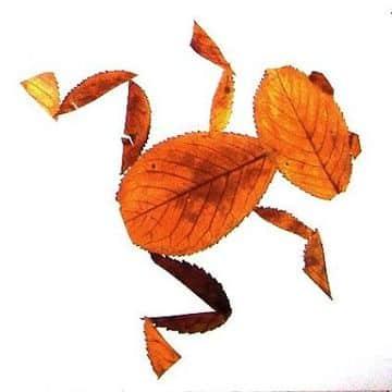 animales hechos con hojas secas sencillos