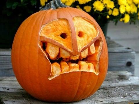 diseños de calabazas para halloween divertidos
