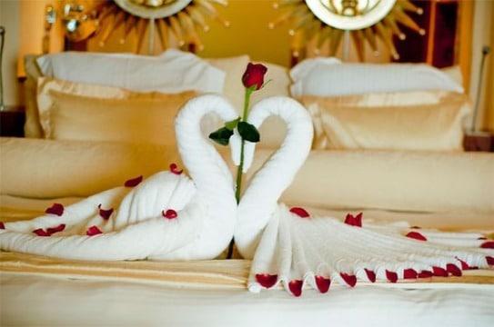 imagenes de como hacer cisnes con toallas