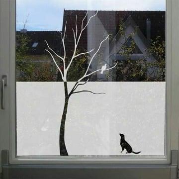 ideas de vinilos esmerilados para ventanas