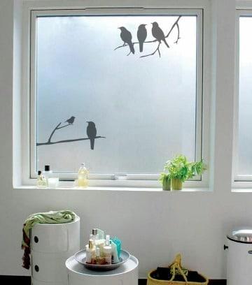 imagenes de vinilos esmerilados para ventanas (1)