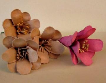 imagenes de flores con carton de huevo