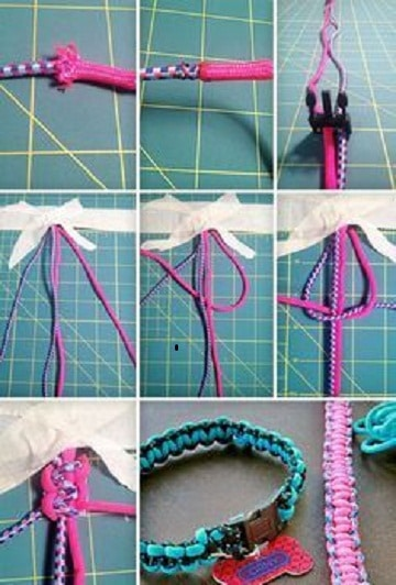 como hacer un collar para perros paso a paso