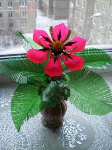 imagenes de flores con botellas de plastico