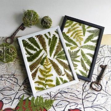 como hacer cuadros hechos de hojas secas