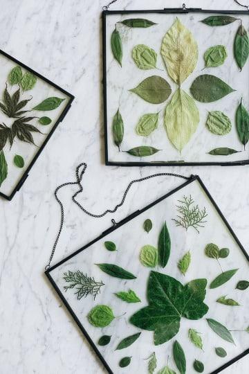 cuadros hechos de hojas secas diy