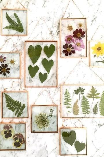 cuadros hechos de hojas secas en casa