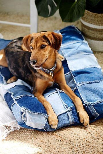 manualidades con tela reciclada para el hogar para los perros
