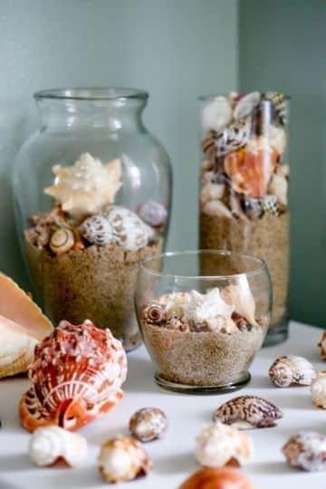 adornos con caracoles de mar para casa