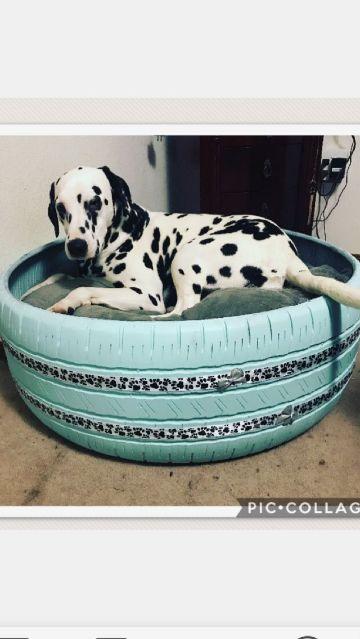 camas para perros de llantas grandes
