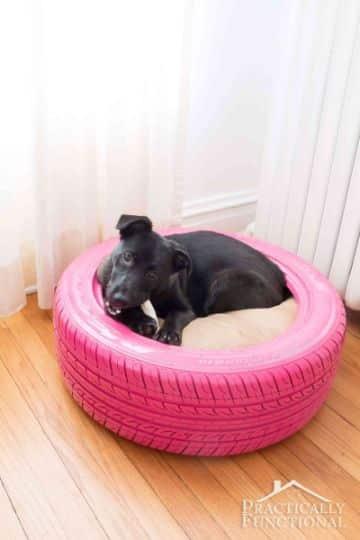 camas para perros de llantas pintadas