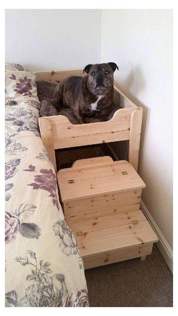 camita de madera para perros en el cuarto