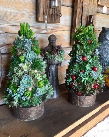 arboles de navidad con suculentas pequeños