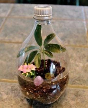 manualidades con botellas de refresco para el jardin