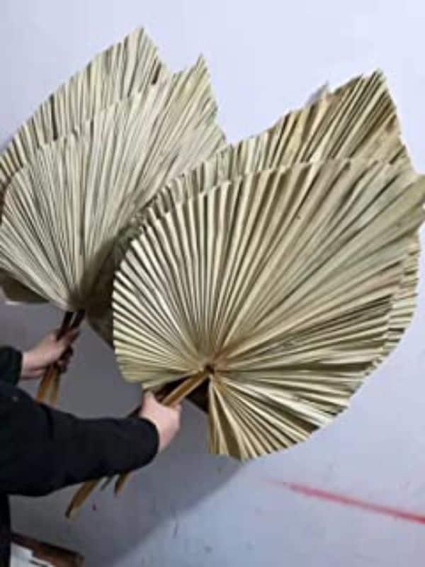 manualidades con hojas de palmeras secas sencillas