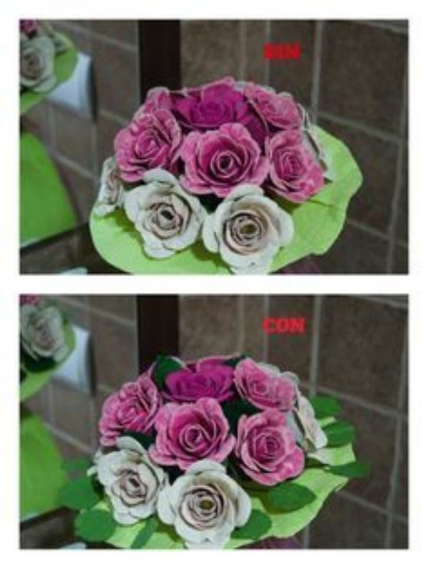 ideas para rosas con carton de huevo