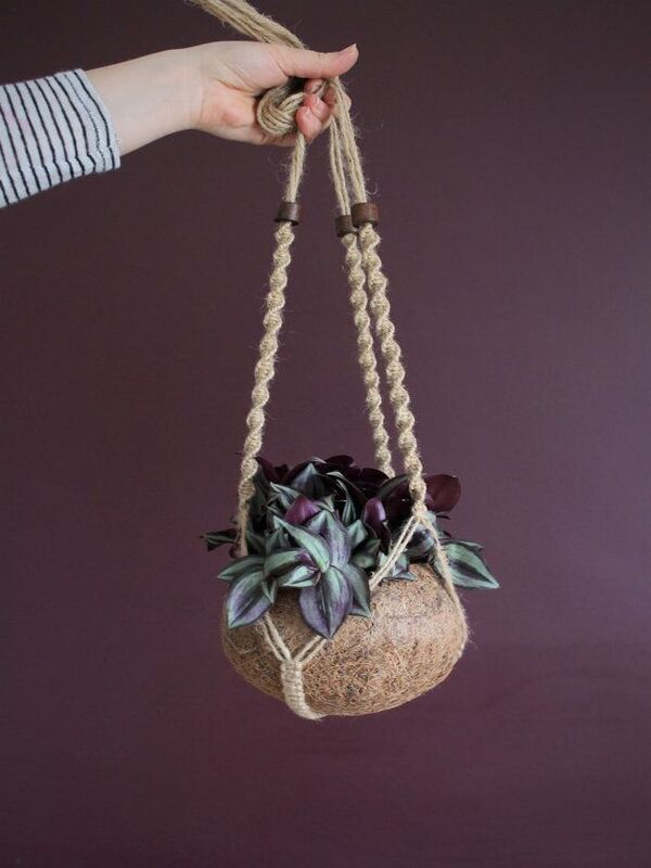 manualidades con cocos secos maceta
