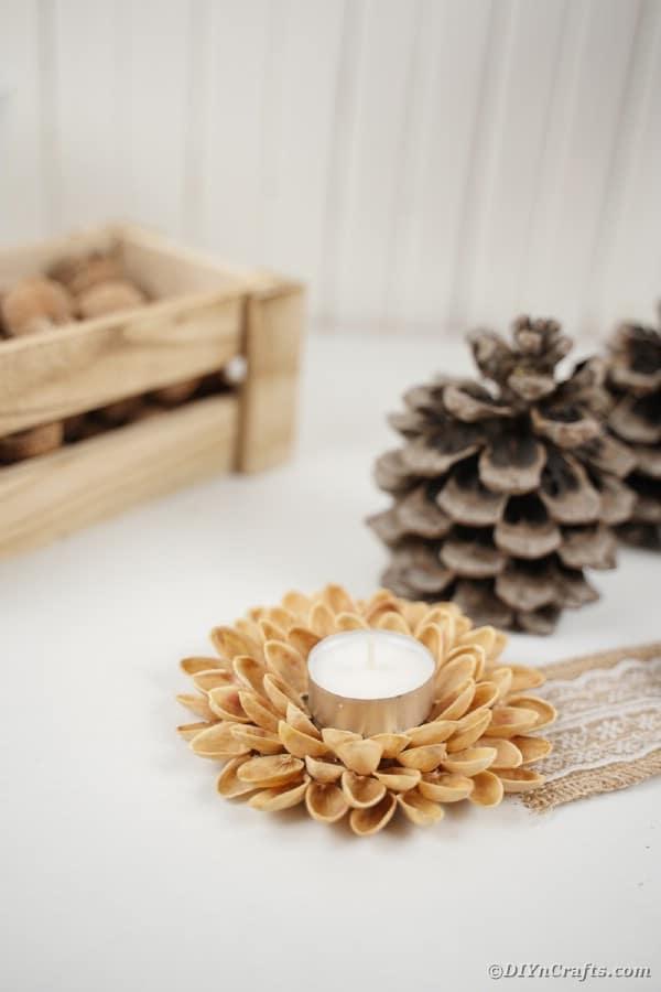 manualidades con cascara de pistacho velas